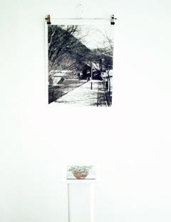 The Dune Artist Group Windhoek/Berlin. Mariella Lo Manto